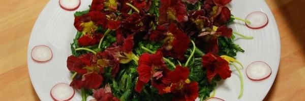 Çiçekli Radika Salatası Thumbnail